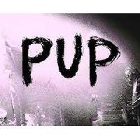 PUP - Interview